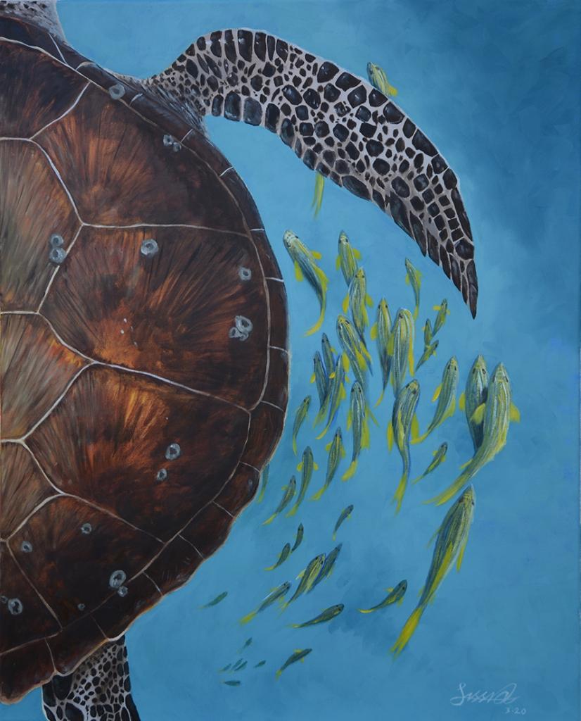 Sea Turtle | Oil on Canvas