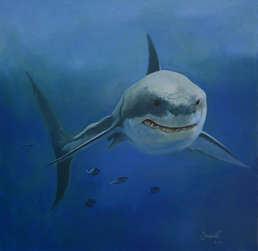Great White | Oil on Canvas